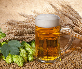 Beer Raw Materials